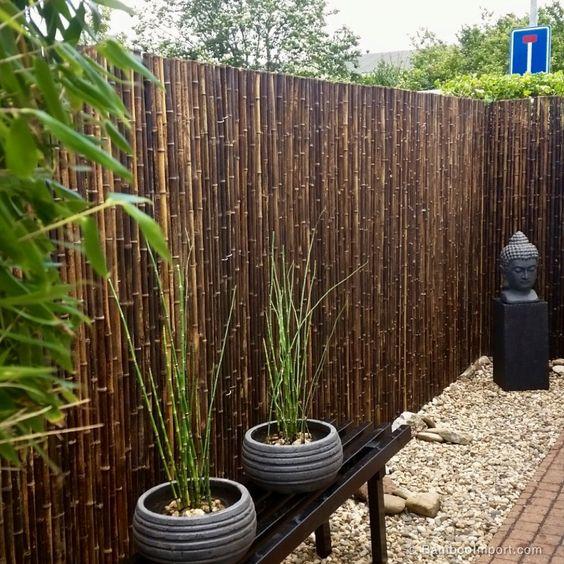 bamboo afscheiding