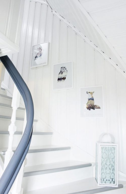 Binnenkijker bij Noorse fotograaf