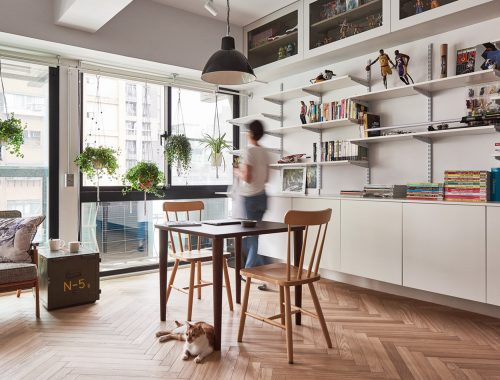 interieur-ontwerp-kat-huis-interieur