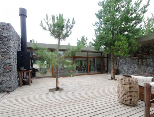 Intieme patio tuin
