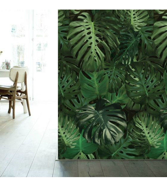 Jungle behang Kek Monstera