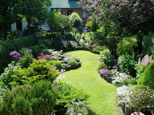 Kleine tuin inrichten for Tuin inrichten planten