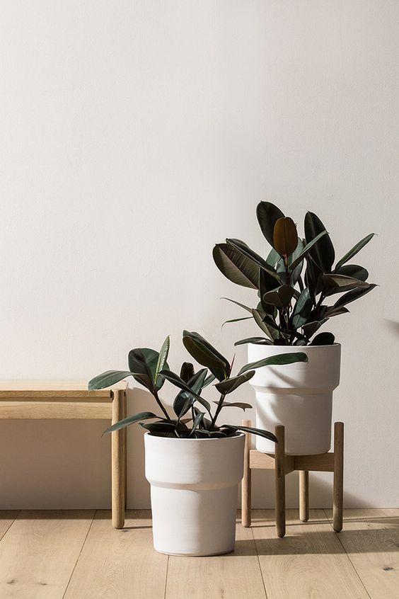 oosters interieur planten