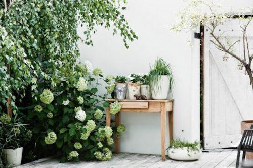 Patio tuin van interieurontwerper Jacek Kolasiński