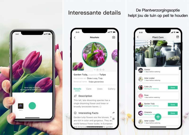 planten herkennen app picturethis