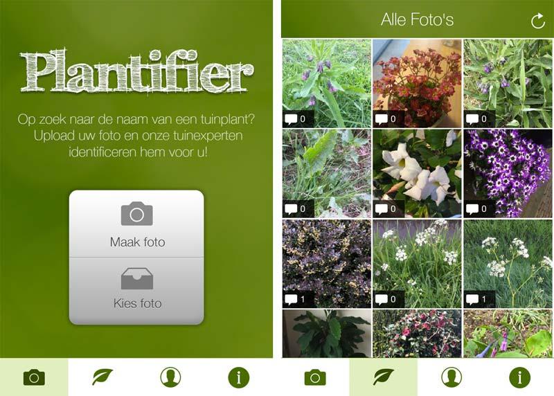 planten herkennen app plantifier
