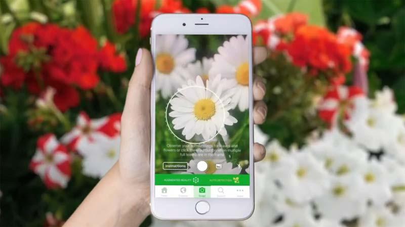 planten herkennen app plantsnap
