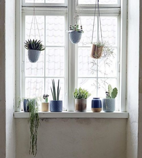 Planten ophangen