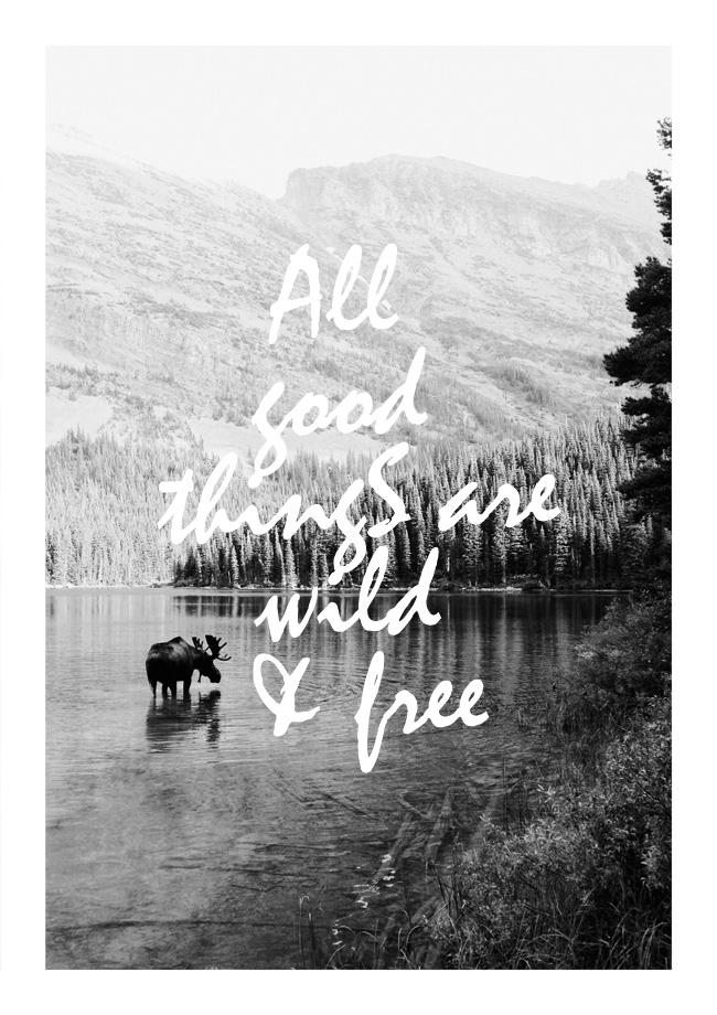 Wild en Free poster OHMYHOME